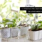 6 Vegetais Pra Cultivar em Casa (em Apartamento Também)